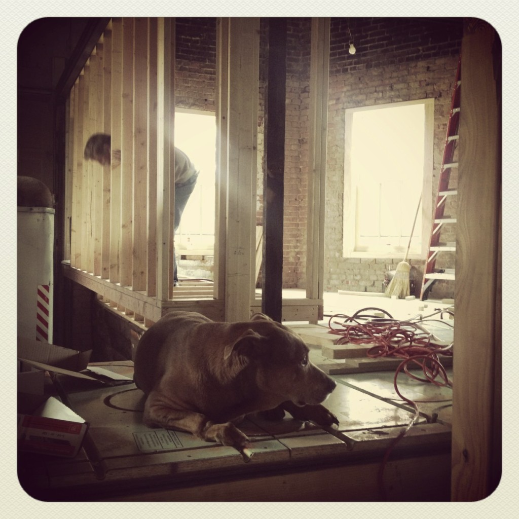 Building our bedroom closet!! Our friend Bruno, apparently not pulling his weight.